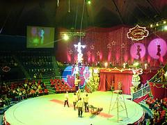 представление цирке