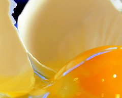 яйцо скорлупы